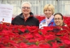 Poinsettias For Patients